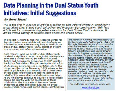 Data Planning in the DSY Initiatives: Initial Suggestions